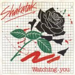 Shakatak - Watching you