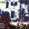 Tribe - Outside